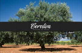 Pozadie na plochu (wallpaper) Olivový olej Coroliva